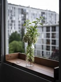 Le végétal